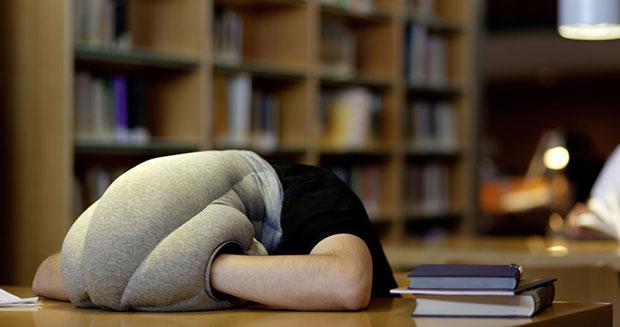หมอน Ostrich Pillow