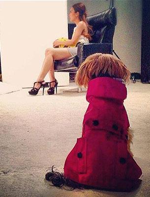 เสื้อโค้ทสุนัข