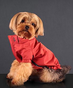 Petersham All Weather Rain Jacket Red