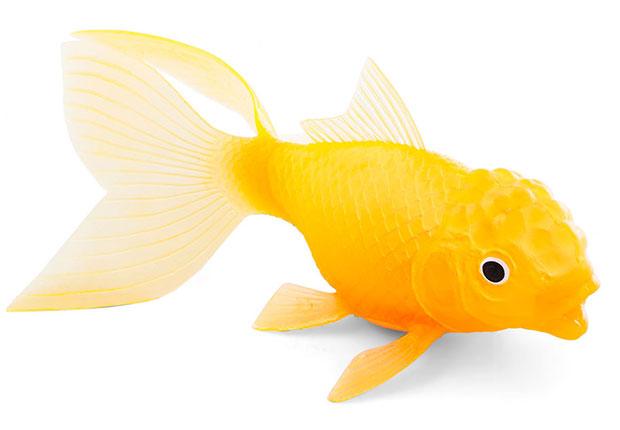 ตุ๊กตาปลาทองงลอยน้ำ