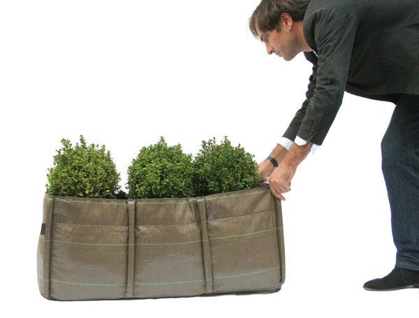 ปลูกต้นไม้ในถุง