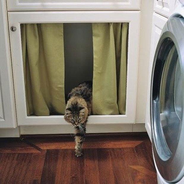 เจาะตู้ซ่อนกระบะทรายแมว