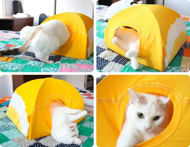เต็นท์แมว DIY
