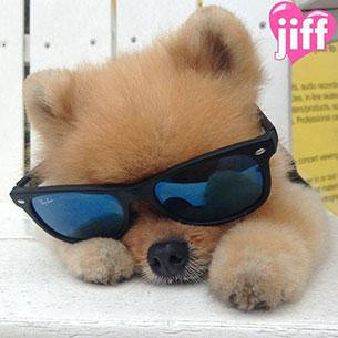 Jiff - แว่นตากันแดด