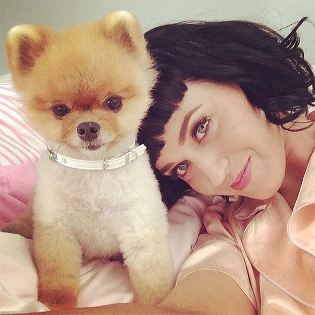 Jiff - Katy Perry