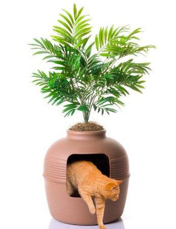 บ้านแมว กระถางต้นไม้