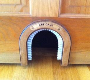 ประตูสำหรับแมว
