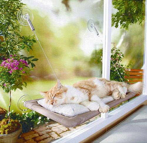 เตียงนอนแมว