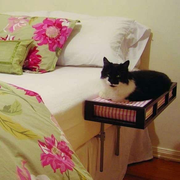 เตียงเสริมแมว