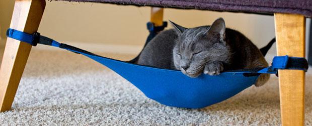 เปลใต้เก้าอี้แมว