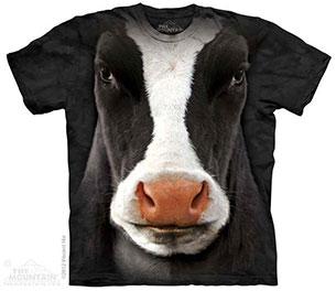 เสื้อยืด วัว