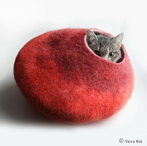 โพรงเตียงนอนแมว