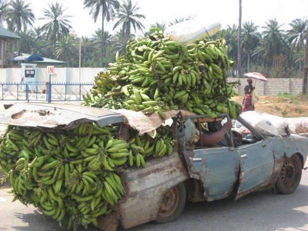 Africa รถขนกล้วย เกินขนาด