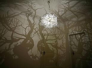 Forms in Nature โคมไฟเงาในป่า