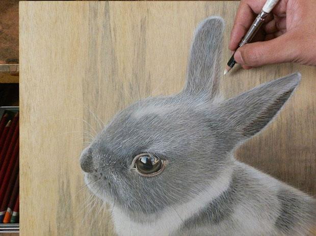 ภาพวาด 3 มิติ กระต่าย