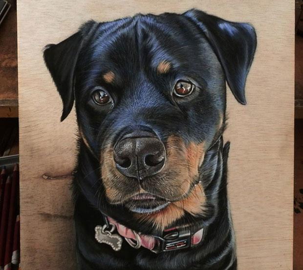 ภาพวาด 3 มิติ สุนัข