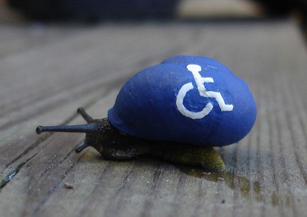 ระบายสีหอยทาก สัญลักษณ์คนพิการ