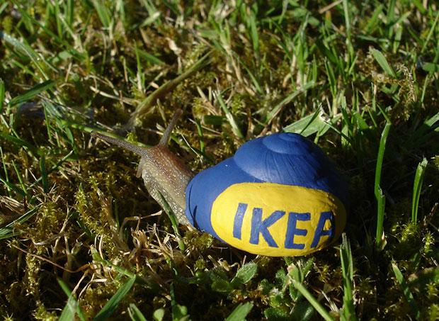 ระบายสีหอยทาก Ikea