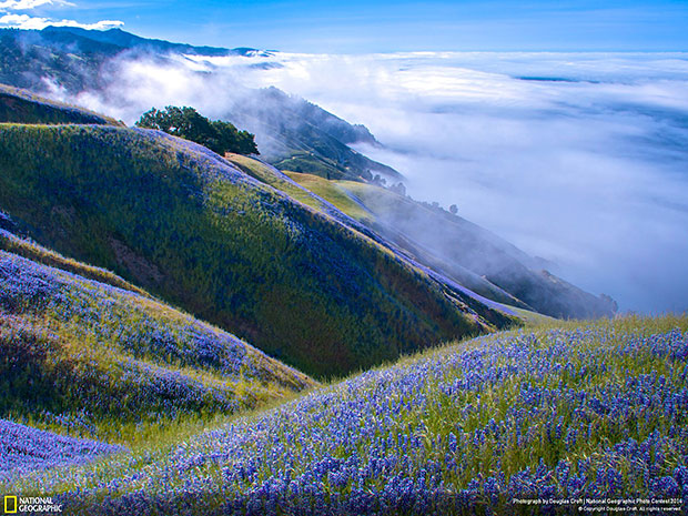 National Geographic Photo Contest 2014 Above Big Sur