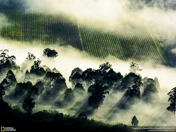 National Geographic Photo Contest 2014 Kings Valley Clouds
