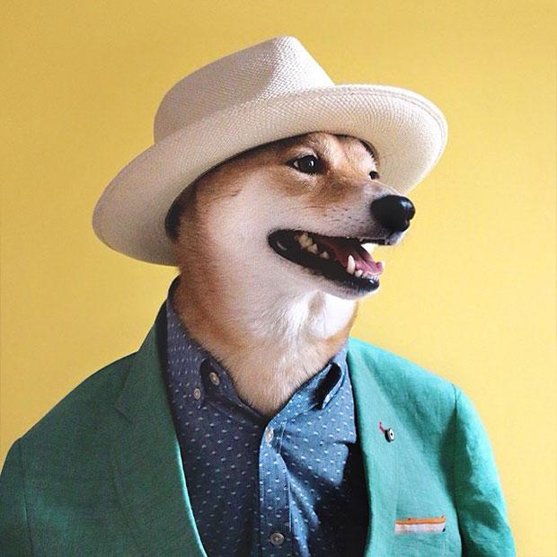 หมา สูทเขียว เสื้อเชิ้ตน้ำเงิน