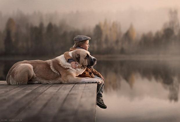 ภาพถ่ายหมาและเด็กนั่ง