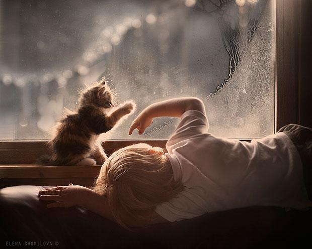 ภาพถ่ายเด็กเล่นกับแมวที่หน้าต่าง