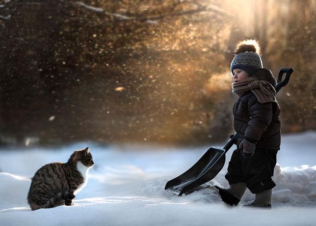 ภาพถ่ายแมวกำลังดูเด็กกวาดหิมะ