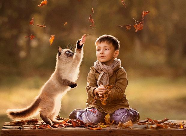 ภาพถ่ายแมวและเด็กเล่นใบไม้