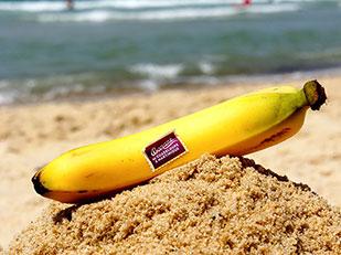 ประโยชน์จากกล้วย