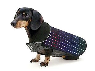 เสื้อสุนัขติด LED เพื่อป้องกันสุนัขหาย