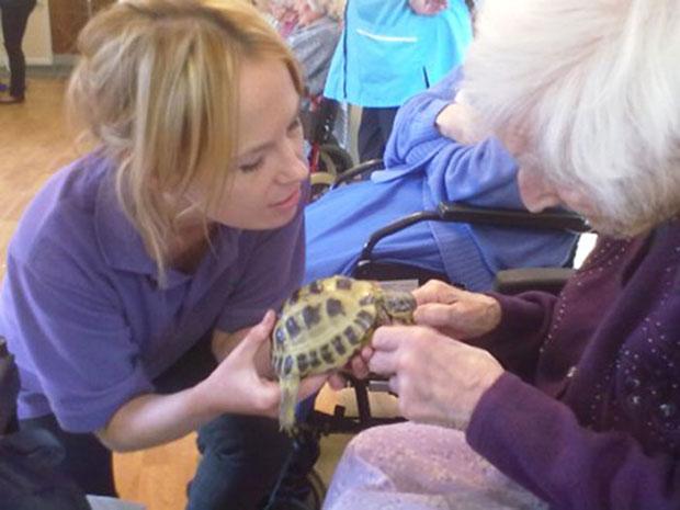 เต่าสร้างชีวิตชีวาให้ผู้สูงอายุในบ้านพักคนชรา