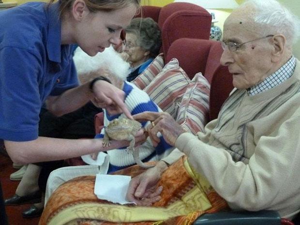 เบี๊ยดดราก้อนสร้างชีวิตชีวาให้ผู้สูงอายุในบ้านพักคนชรา