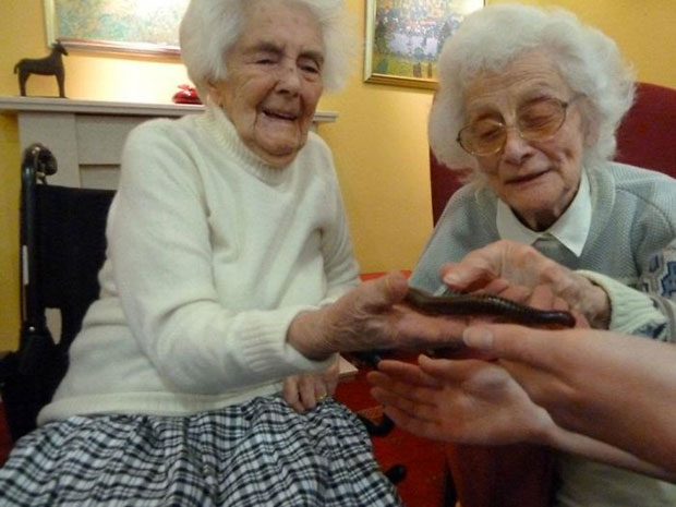 ไส้เดือนสร้างชีวิตชีวาให้ผู้สูงอายุในบ้านพักคนชรา