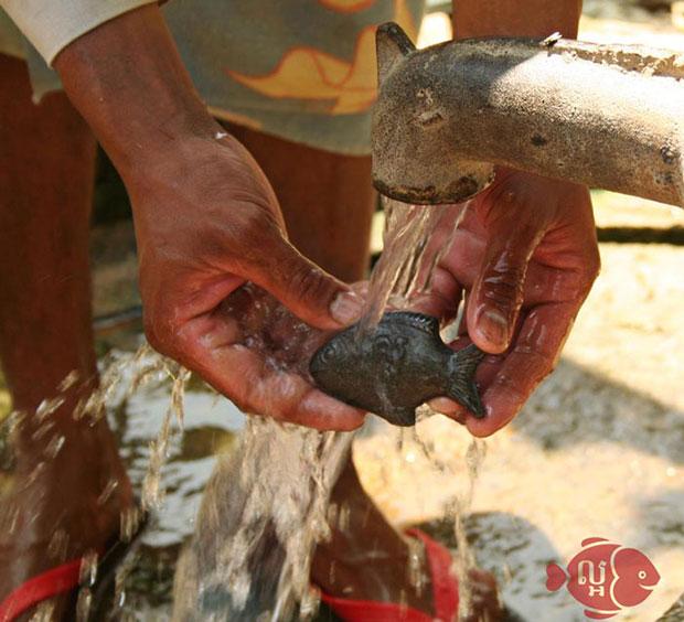 ปลาเหล็กช่วยคนขาดธาตุเหล็ก
