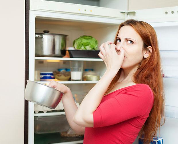 ลืมทำความสะอาดซีลยางขอบประตูตู้เย็น