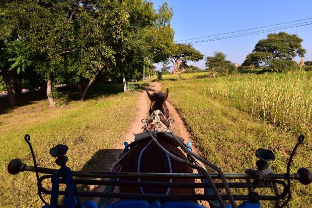 นั่งรถม้าชมทะเลเจดีย์ ประเทศพม่า