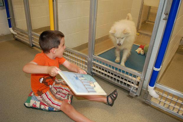 เด็กๆอ่านหนังสือให้สุนัขฟังให้คุ้นเคยกับคนก่อนมีคนรับไปเลี้ยง