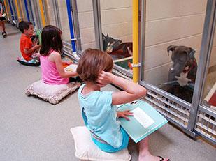 เด็กๆอ่านหนังสือให้สุนัขฟังเพื่อให้คุ้นเคยกับคนก่อนหาบ้านให้
