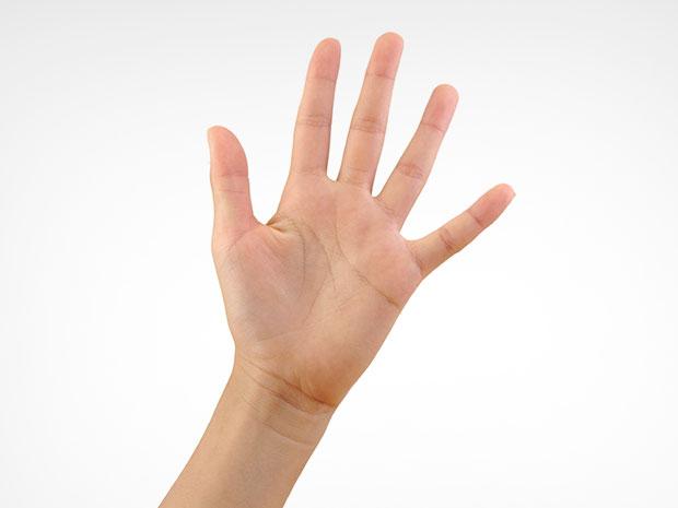 ขนาดของฝ่ามือบอกบุคลิกภาพได้