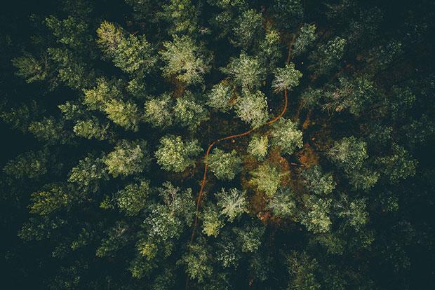 ภาพถ่ายสวยๆถ่ายจากโดรน