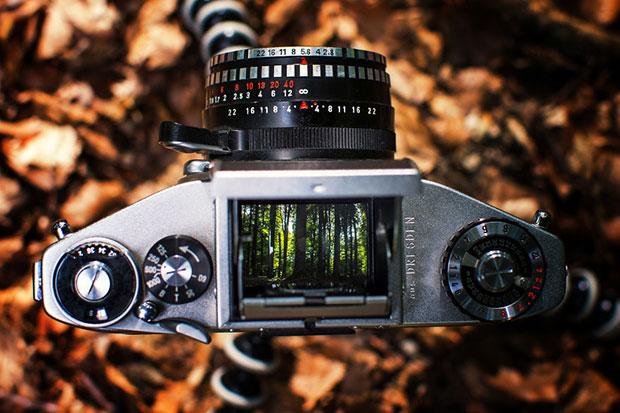 รูปถ่ายสุดน่าประทับใจจากช่องมองภาพของกล้องอนาล็อกโบราณ