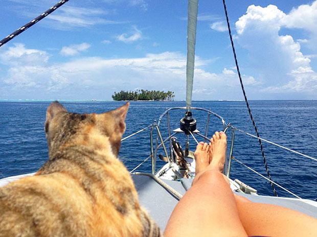 หญิงสาวคนนี้ลาออกจากงานเพื่อมาล่องเรือเที่ยวรอบโลกกับเจ้าเหมียวคู่ใจ