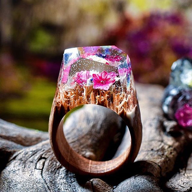 ย่อโลกใบจิ๋วสู่แหวนไม้กับความสวยสะกดใจตามฤดูกาล