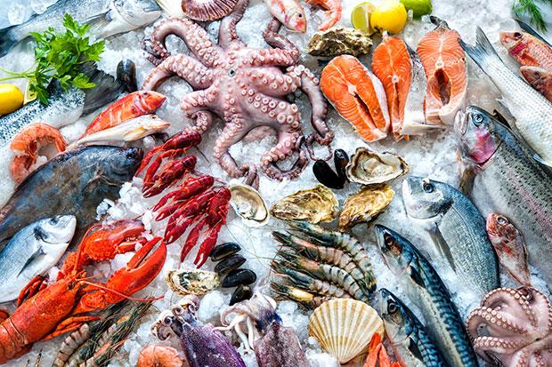รู้หรือไม่ว่ากำลังกินชิ้นส่วนพลาสติกจากอาหารทะเล