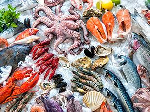 เรากำลังกินชิ้นส่วนพลาสติกจากอาหารทะเล