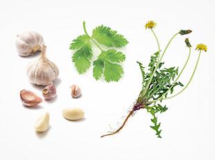 อาหารที่มีประสิทธิภาพในการล้างพิษตับ ไขมันพอกตับ โรคตับ