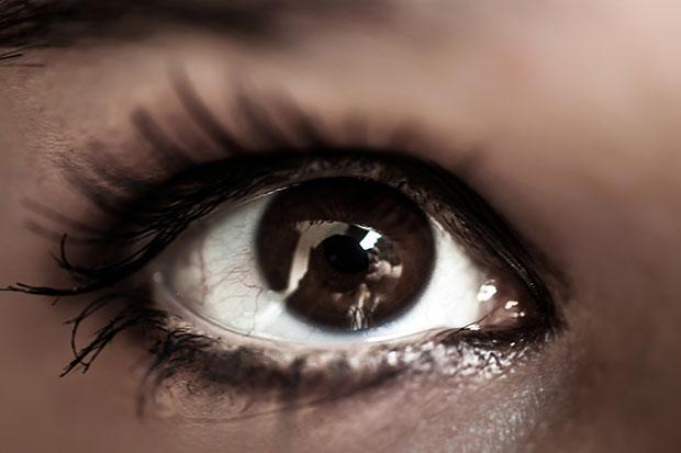 ผู้ที่มีดวงตาสีน้ำตาลไว้ใจได้มากกว่าคนทั่วไปจริงหรือ