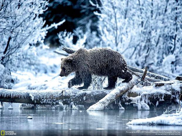 ภาพ National Geographic สายธรรมชาติ