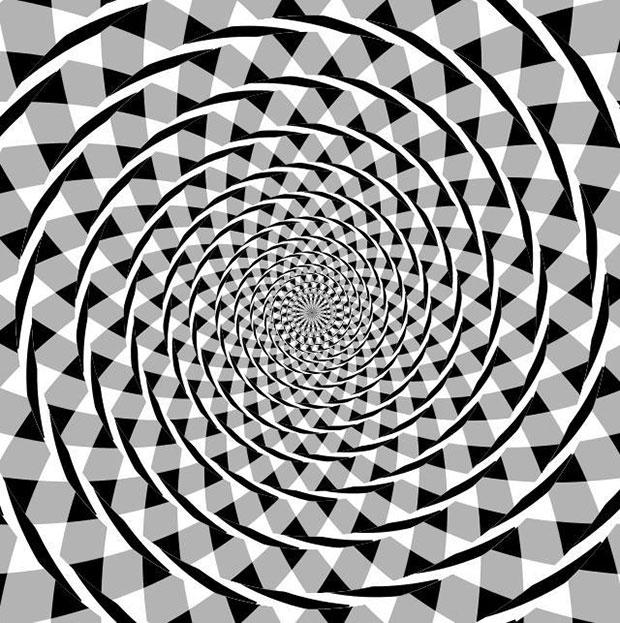ภาพลวงตา เมื่อเส้นวงก้นหอยไม่ใช่เส้นวงก้นหอย